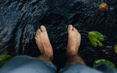 """Grounded """"the documentary"""" De helende krachten van blootvoets op de aarde te lopen…"""